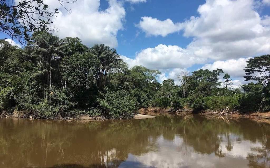 De bruine Cuyabeno rivier in de Cuyabeno Wildlife Reserve in Ecuador