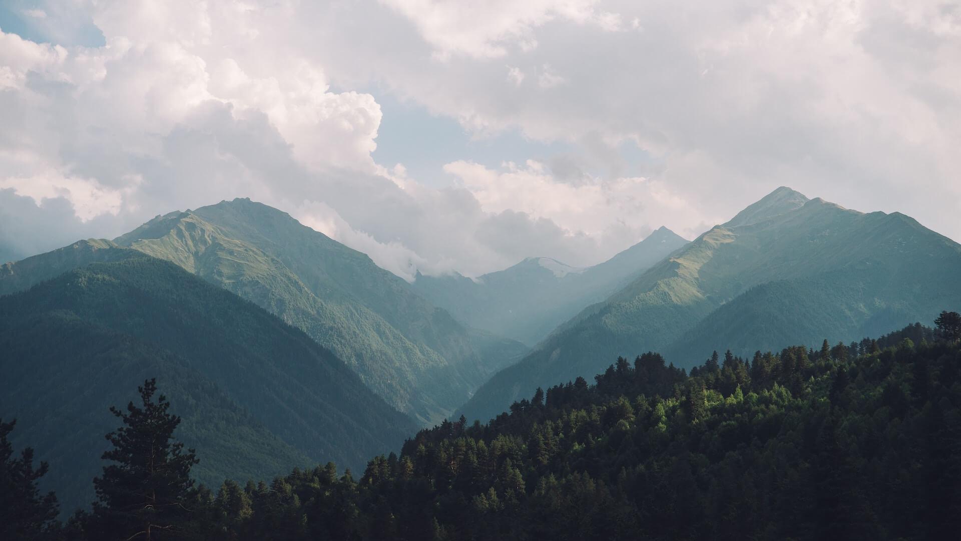 Groene heuvels en bossen bij Mestia in Georgie