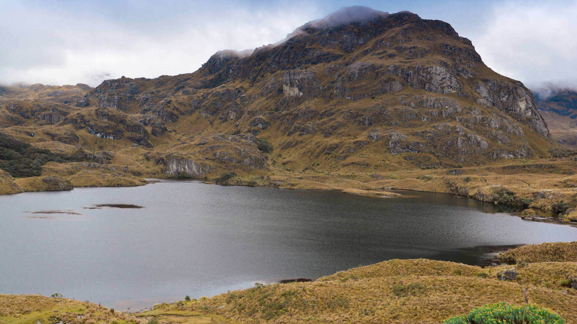 Berg, wolken en meer in Cajas National Park vlakbij Cuenca in Ecuador