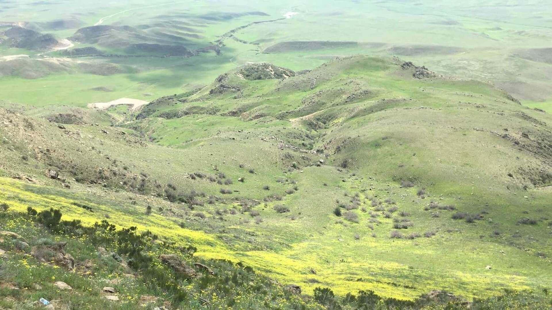 Groene heuvels van Azerbeidzjan bij het klooster van David Garedzja in Georgië