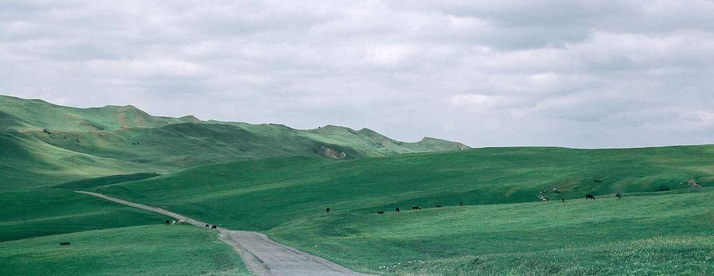 Groene heuvels bij David Garedzja in Georgië