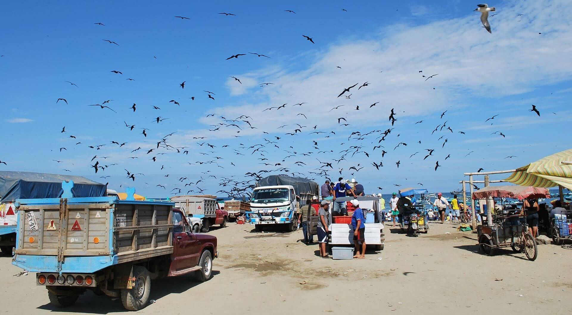 Visvangst bij Puerto Lopez in Ecuador