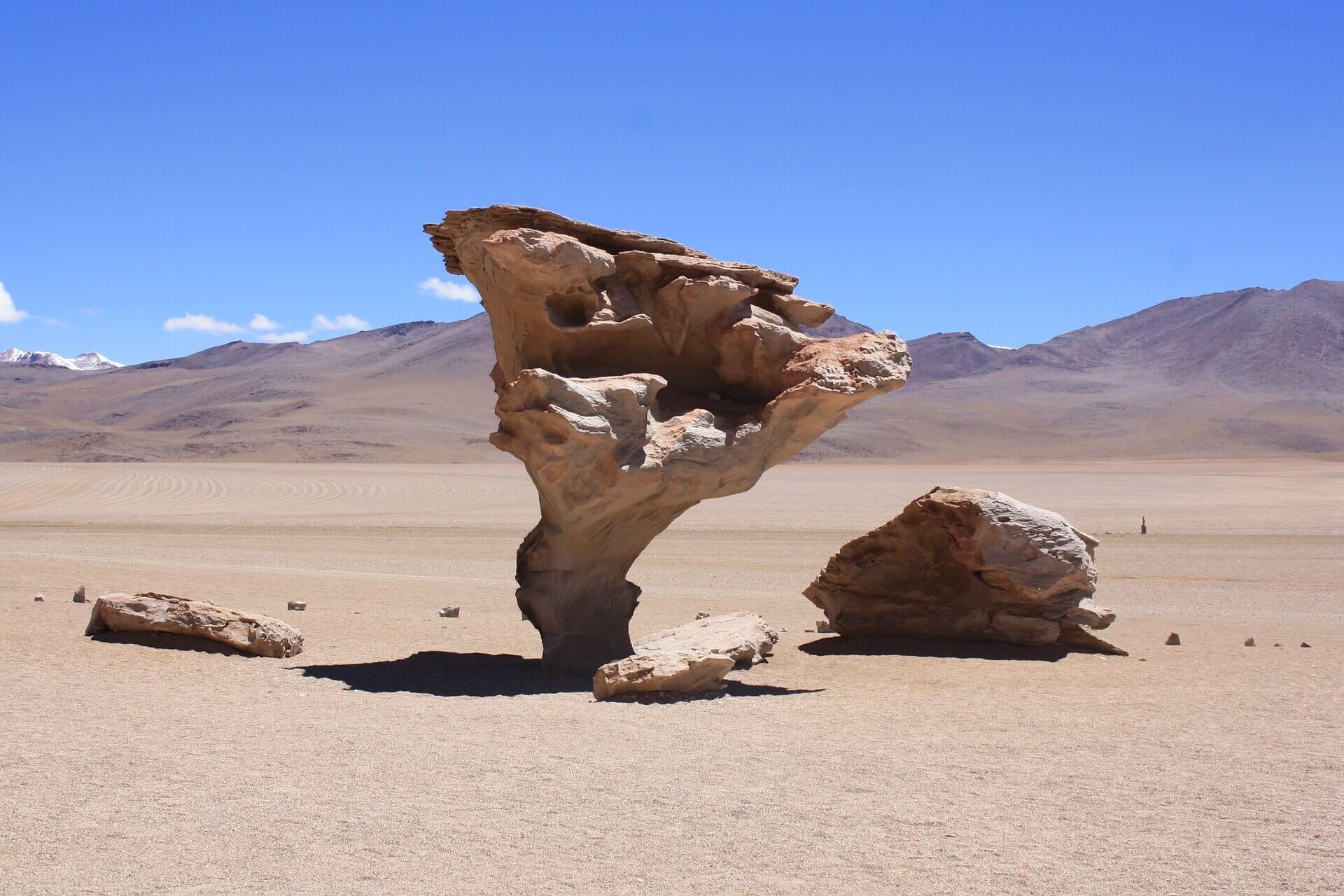 Stenen boom in de Salvador Dali woestijn bij Uyuni in Bolivia